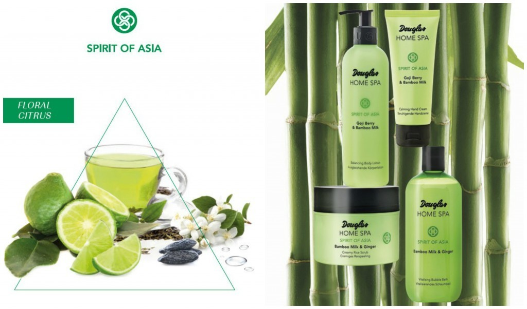 HOME SPA SPIRIT OF ASIA